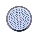 shower-rose-2605-8007-753136378845361
